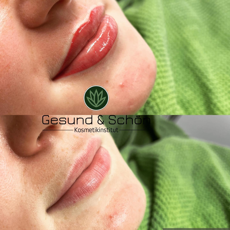 lippe pmu2 Permanent Make Up
